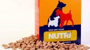 واردات غذای سگ و گربه ممنوع شد