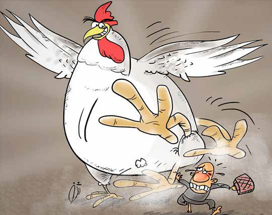 مرغ گرانتر از ٢٨ هزار تومان، سودجویی است