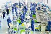عرضه رایگان سهام کارخانهها به کارگران