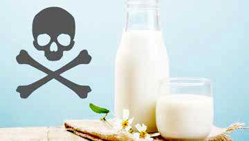 آلودگی شیرهای پاستوریزه چقدر جدی است؟