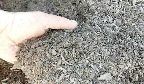 صف طویل برای خرید خاک کیلویی 5 هزار تومان!