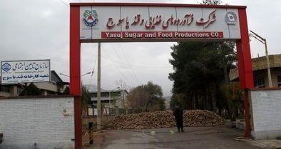 وضعیت کارگران کارخانه قند یاسوج دردناک است