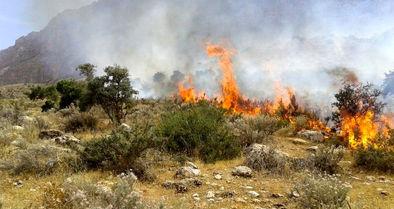 آتش دوباره در منطقه بوزین و مرخیل پاوه شعلهور شد