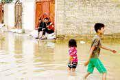 خطر مارگزیدگی و عقربگزیدگی در مناطق سیلزده خوزستان