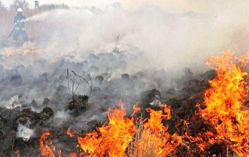 آتش در «بوزین و مرهخیل» همچنان شعلهور است