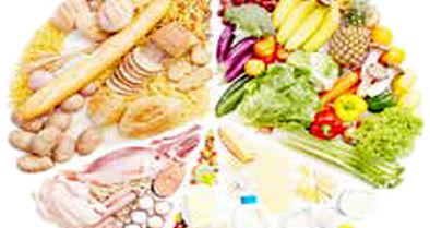 تدوین سند امنیت غذایی برای ۷ استان
