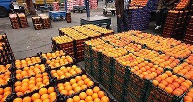 توزیع میوههای تنظیم بازاری شب عید در برخی پایگاههای بسیج
