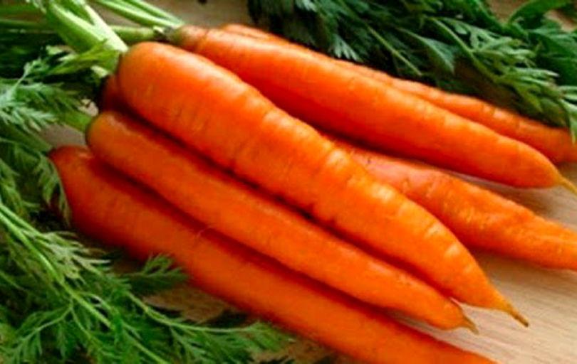 ۳ دلیل گرانی هویج در بازار
